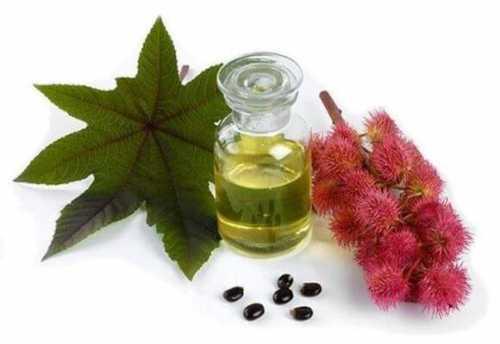 касторовое масло для бровей, рецепты масок и правила применения